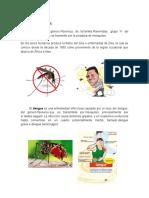 Dengue y Zika