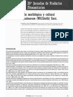 caracterización morfológica y estructural de Fusarium culmorum