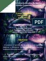 2752 eq 8 CARACTERISTICAS TINTORIALES  DE LOS HONGOS