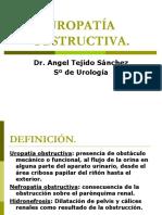 420 2014-02-24 Uropatia Obstructiva Ppt