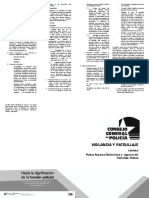 vigilancia_patrullaje2.pdf