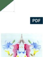 Rorschach protocolo de aplicación