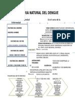 Historia Natural de La Enfermedad Del Dengue.