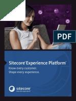Experience Platform BR LTR Fin