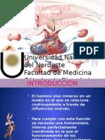 Hormonas Hipotalámicas - Hipofisarias (1)