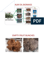 Palm Oil Biomass