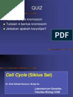 4. Skema Siklus Sel Mitosis-Meiosis