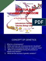 3. Struktur Dan Fungsi Kromosom