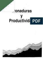 13. Tronaduras y Productividad