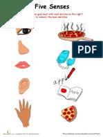 sort-senses.pdf