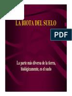 La Biota Del Suelo