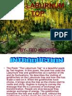 THELABURNUM TOP.ppt