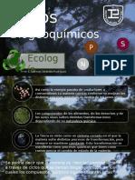 Ciclos Biogeoquímicos (Diapositivas)