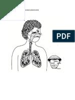 Warnakan Bahagian Anggota Tubuh Yang Tercemar