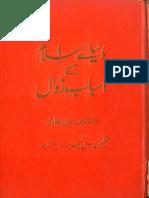 Dunya e Islam Kay Asbab e Zawal by Hasnain Raza Khan