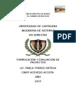 Cindy Acevedo Acosta