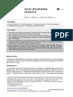 Anatomy and Biomechanics of the Medial Patellofemoral Ligament