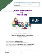 Informe Intermedio Prácticum I