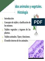 Histología (Biología)
