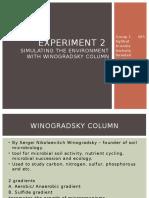Winogradsky Column 2
