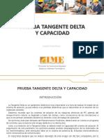 Prueba Tangente Delta y Capacidad IME S.a. (1)