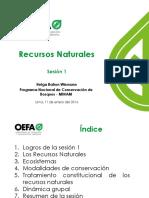 INFORME de Inspeccion | Bosques | Biodiversidad