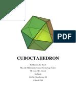 gatproject-cubo essay