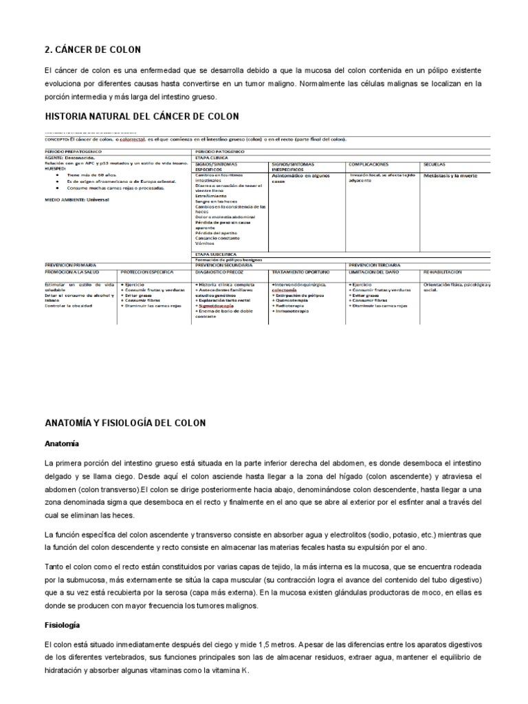 Excepcional Anatomía Y La Fisiología De Cáncer De Colon Cresta ...