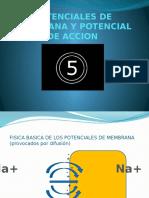 TEMA 5 Potenciales de Membrana y Potencial de Accion