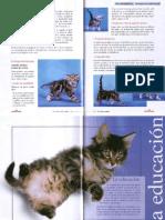 Librito-gatito-2-4