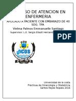 Proceso de atencion en enfermeria TRABAJO DE PARTO
