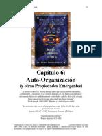 73 Autoorganización (y Otras Propiedades Emergentes)