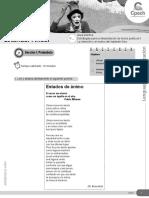 Guía 13 LC-21 CES Estrategias Para La Interpretación de Textos Poéticos II 2015