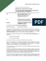 Modelo de Informe Final