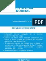 Histología normal- apendice-vesicula-trompas.pptx