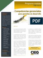 Competencias Gerenciales Para Gerentes en Desarrollo