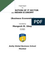 Final Economics Project Report 1