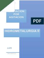 INFORME_HIDROMETALURGIA.docx