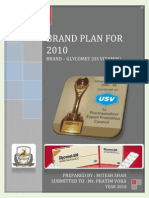 Brand Plan for 2010 - Glycomet (Us Vitamin) - Mitesh Shah
