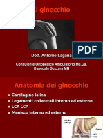 GINOCCHIO+MEGA+pdf