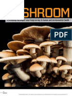Cost Effective Specialty Mushroom Cultivation | Hvac | Air