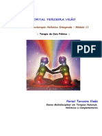 11 - Terapia de Cura Prânica