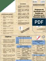 Triptico Programa de Promocion En La Funcion Por Incentivos En Educacion Basica.pdf