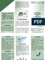 Triptico Programa de Promocion en La Funcion Por Incentivos