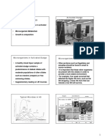 Wastewater Microbasdfiology