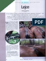 POW_Lejce.pdf