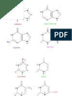 biochem 1