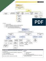 Aerobios G(+).pdf