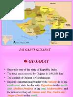 gujarat-i-w-m-u-1207205895493237-8