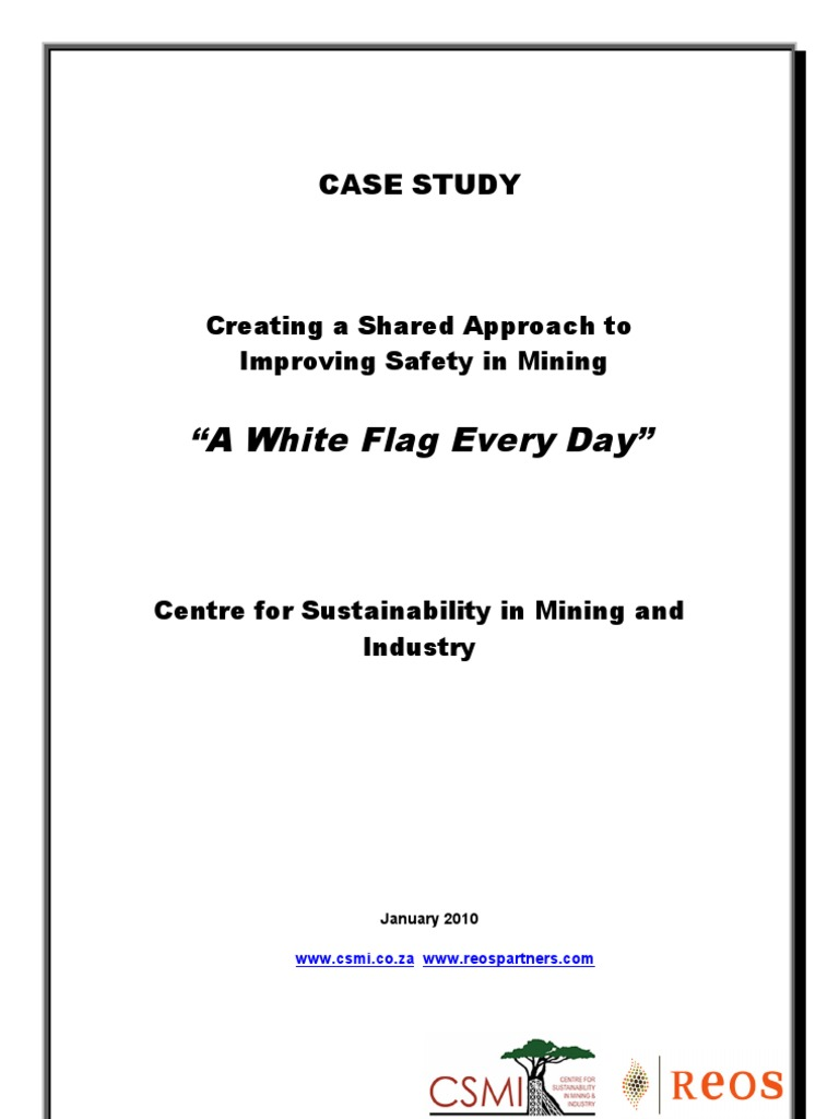 South Africa 2010 AGA Case Study Final_Small